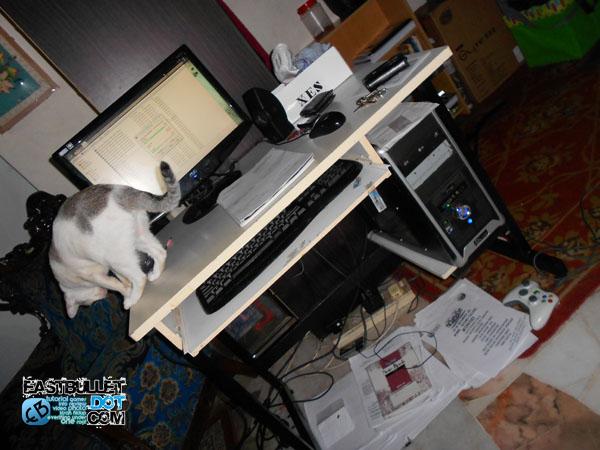 Mia Si Kucing nikon s3100